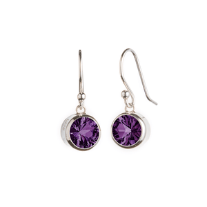 Lang Drop Earrings in Amethyst