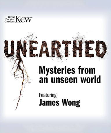 Podcasts- Unearthed