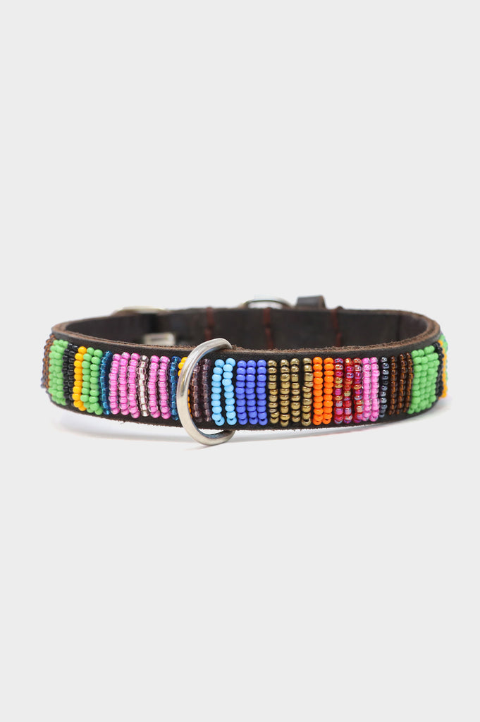 Dog Collar Full Beaded | Multishine