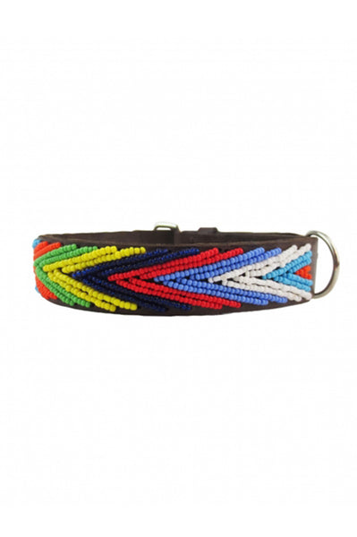Dog Collar Arrow | Multi