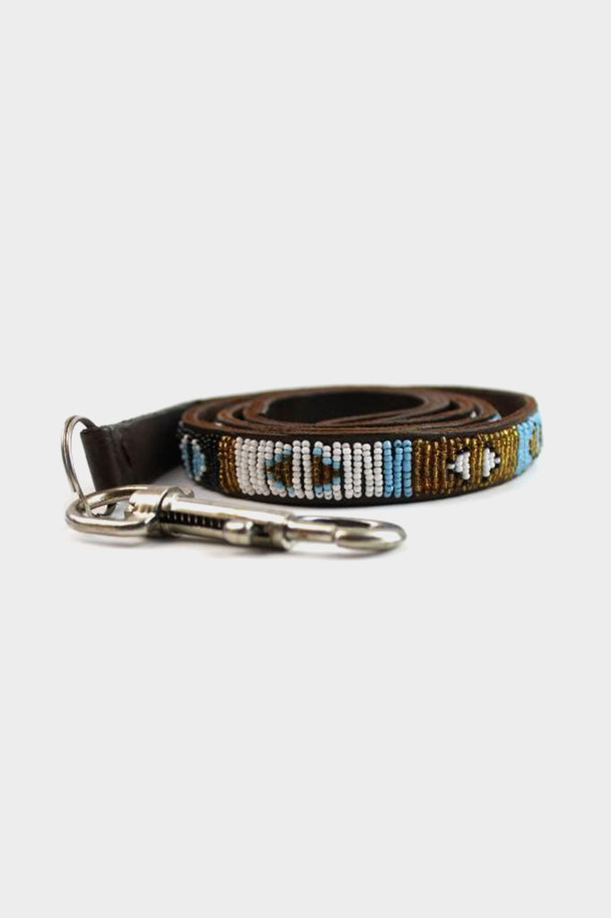 Dog Lead Arrow | Turquoise