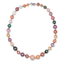 Load image into Gallery viewer, Multi Color Natural Pearl Necklace