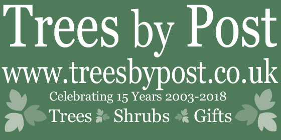 Trees by Post