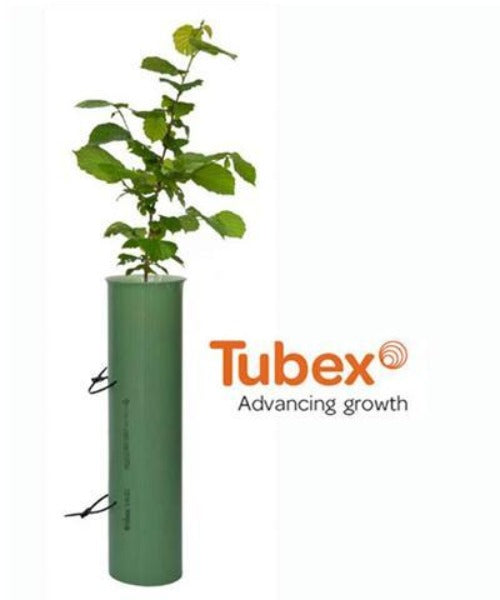 Tubex Shrub Shelters for Shrubs & Wider Evergreen Trees (0.6m) - Trees by Post