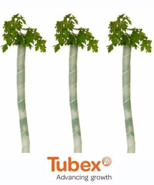 Tubex Spirals for Deciduous Trees (0.6m) - Ideal for Hedging - Trees by Post