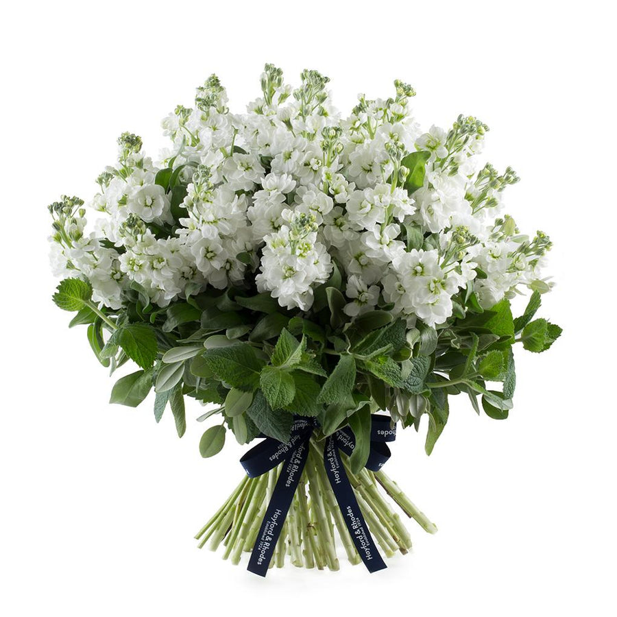 The Matthiola Bouquet