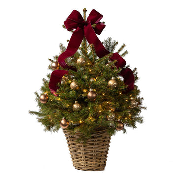 The Tree In A Box 'Ornament' - Hayford & Rhodes International