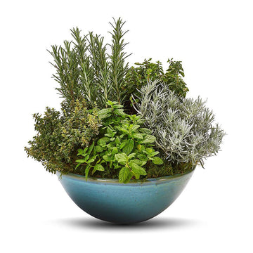 The Herb Planter