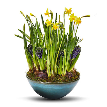The Good Times Spring Planter