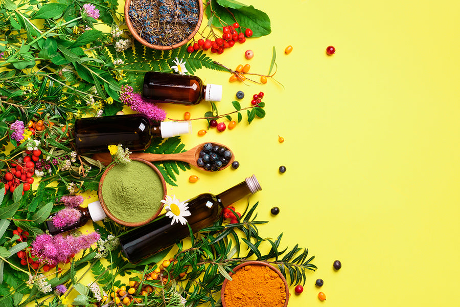 The Science Of Skincare -InTerra Nutraceuticals