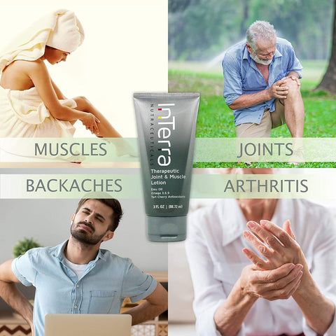 InTerra Natural Therapeutic Joint & Muscle Lotion