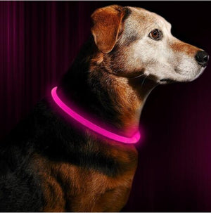 LED Dog Collar Light USB Rechargeable Glowing Dog Collars