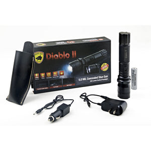 Concealed Stun Gun and Flashlight (Diablo 2)