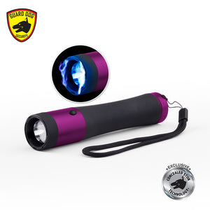 Flashlight and Concealed Stun Gun (Ivy)