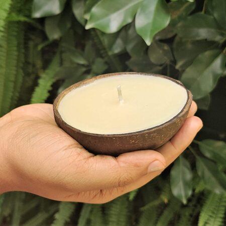 AuraDecor Empty Coconut Shells for Candle Making