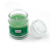 AuraDecor Set of 2 Green Apple Fragrance Jar Candles ( Burning Time 30 hours Each ) - auradecor.co.in