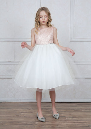 Blush Lace Brocade and Tulle Dress