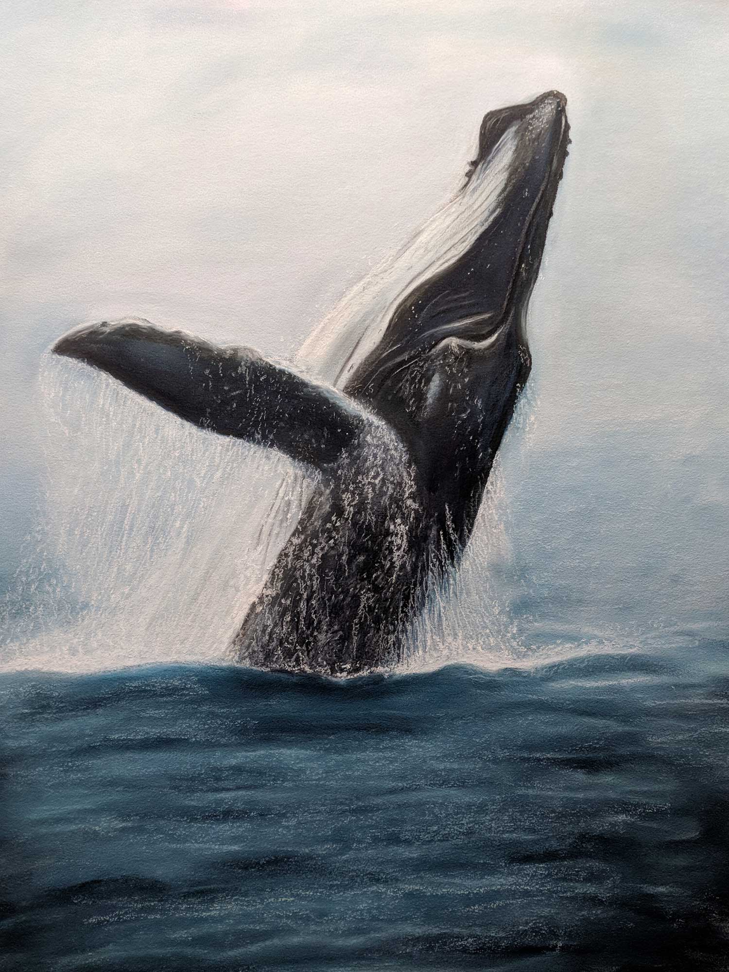 Humpback Happiness