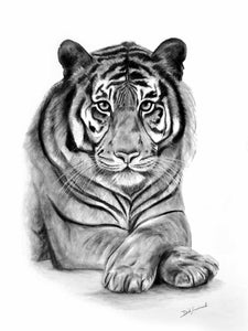 Majestic (Tiger) SOLD
