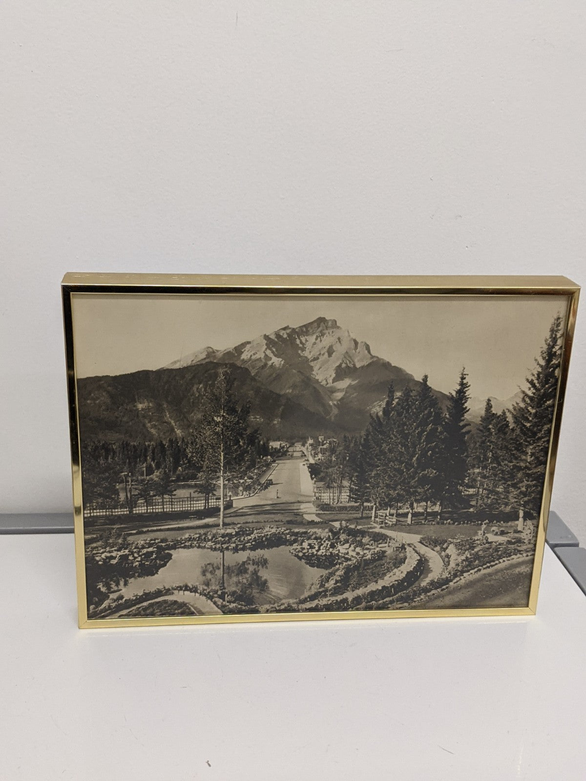 Byron Harmon Mountain in Gold Frame