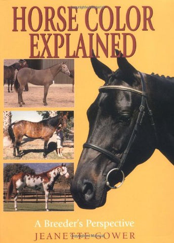 Horse Color Explained: A Breeder'S Perspective