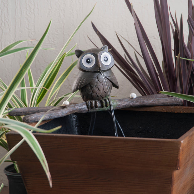 Treefolk Owl Planter Fountain
