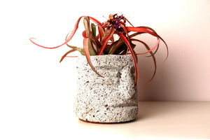 Zojila.com : Yaotl Planter: Hand carved volcanic rock small planter 4.5 x 4.5 x 4.5 inches : Garden & Home Improvement
