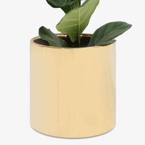 "12"" Modern Ceramic Planter (White, Black, Peach, Gold)"