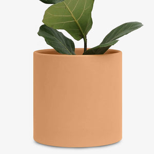 "10"" Modern Ceramic Planter (White, Black, Peach, Gold)"
