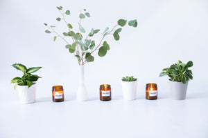 Warmth: Soy Candle with Essential Oils