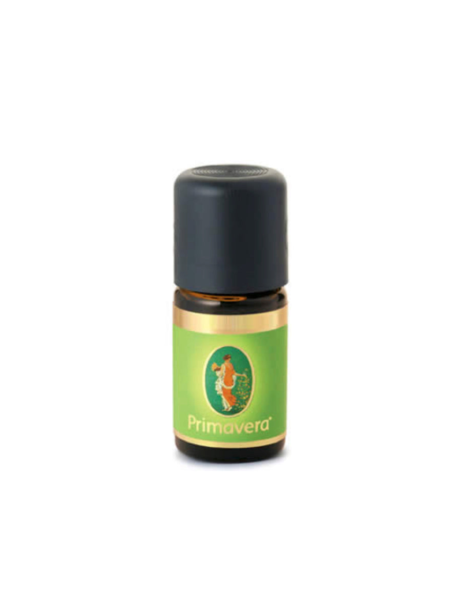 Mint Moroccan Essential Oil