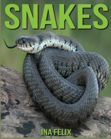Snakes Amazing Pictures /& Fun Facts on Animals in Nature