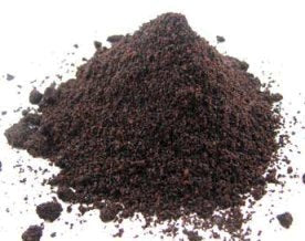 Elderberry Powder - Bulk Organic