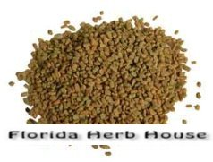 Fenugreek Seeds - Bulk Organic