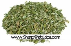 Lobelia Tea - Stop Smoking - Bulk Organic - 4 oz