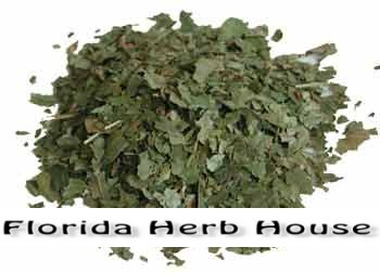 Witch Hazel Leaf - Organic & Pure