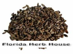 Milk Thistle Seeds - Bulk Organic