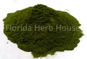 Spinach Juice Powder - Bulk Organic