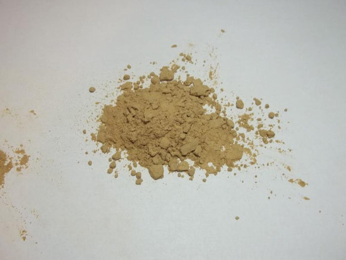 Chanterelle Wild Mushrooms Powder - Wildharvested - 1 oz.