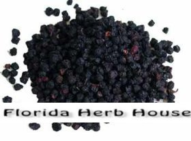 Bilberries - Bulk Organic