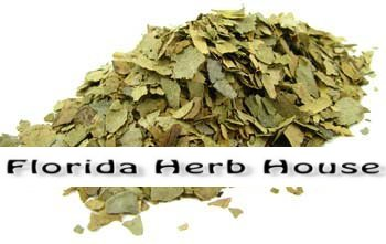Curry Leaf - Bulk Organic