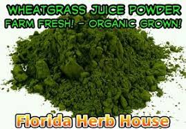 Wheatgrass Juice Powder - Organic