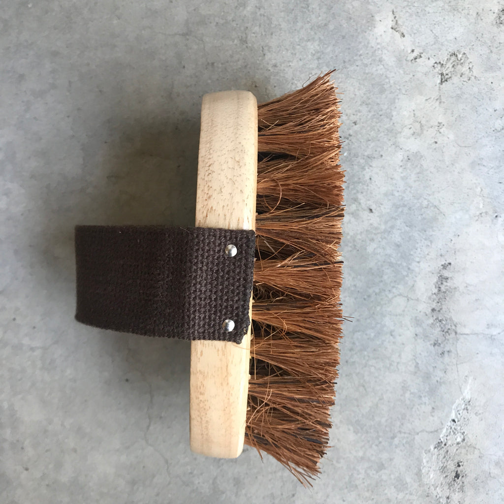 Wooden Dog Brush from The Ekologi Store, Sydney, Australia