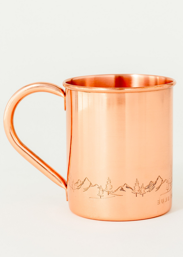 United by Blue fir sure copper mug