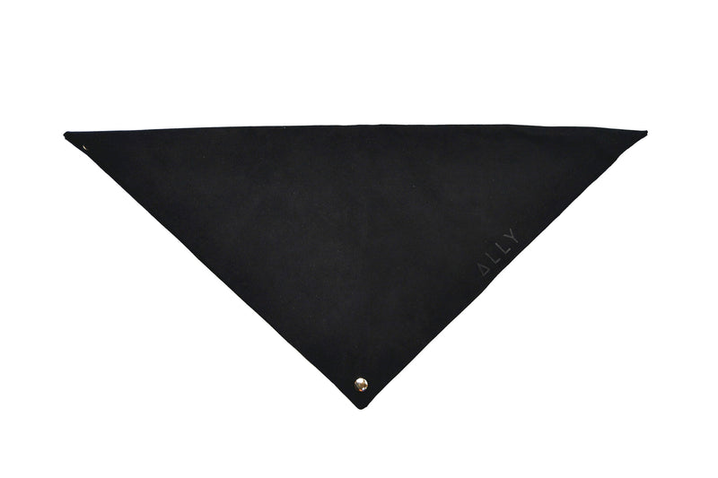 The Black Dust Bag