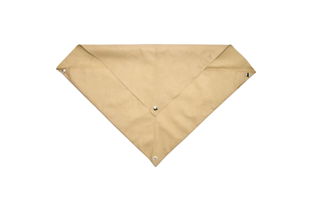 The Nude Dust Bag