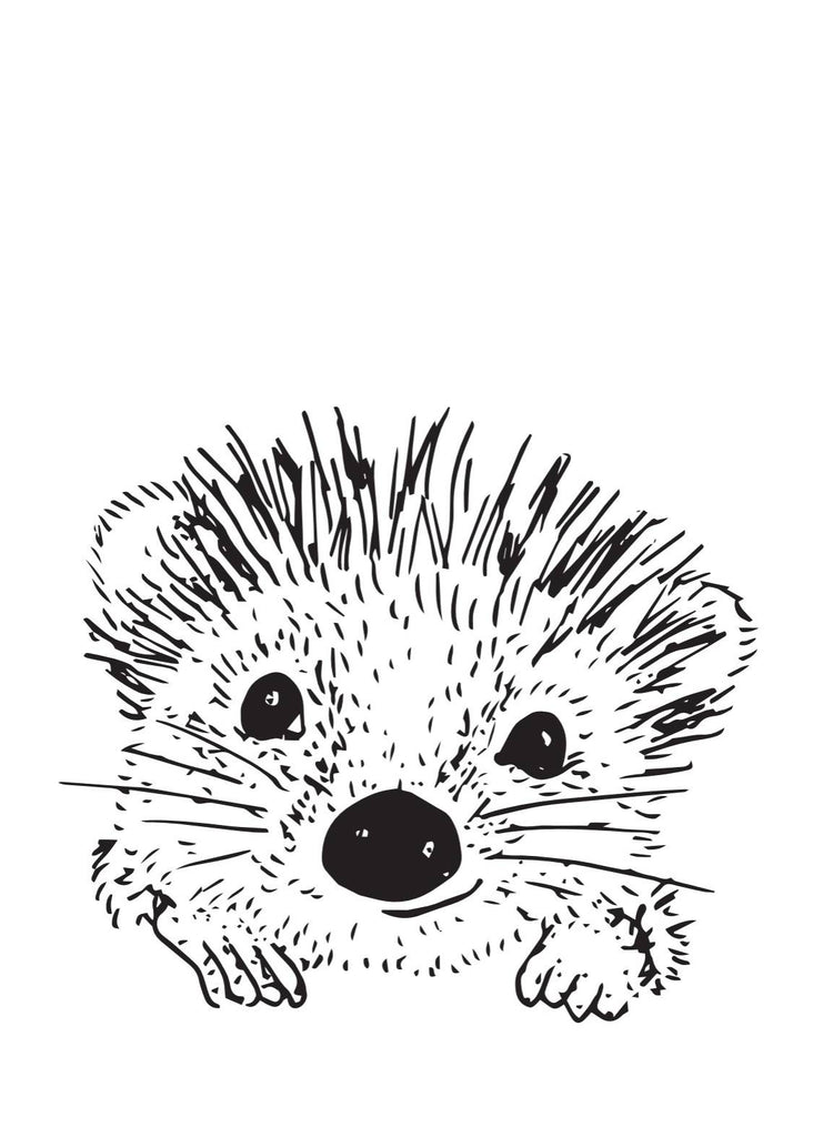 Pip the Hedgehog Artwork