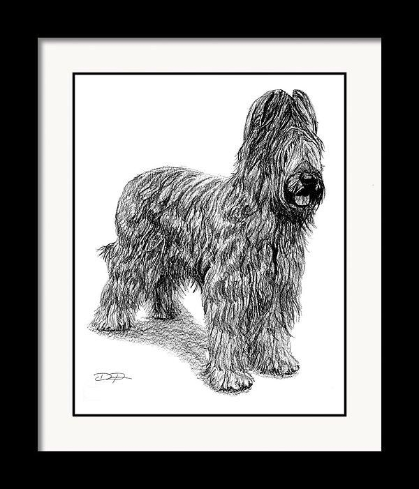 Briard Dog Fine Art Print - Dan Pearce Creative Shop