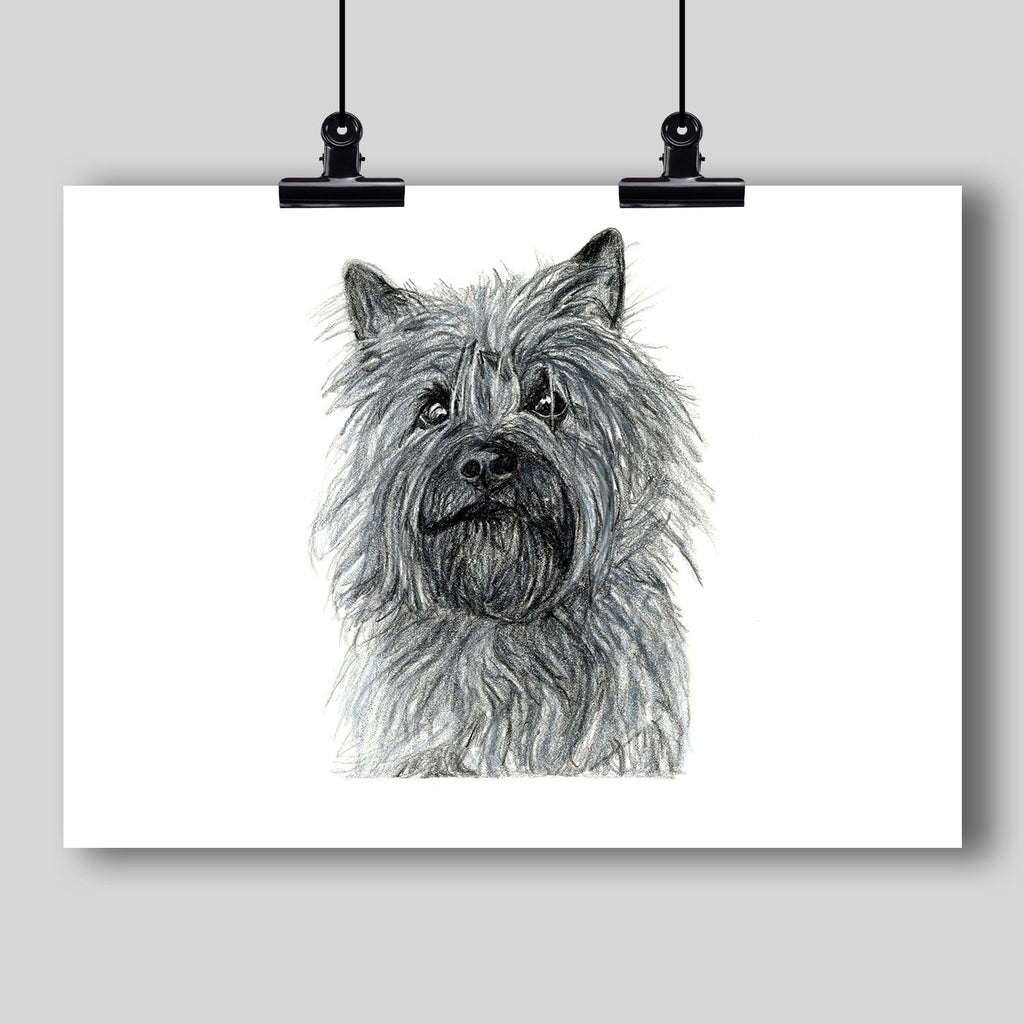 Cairn Terrier Dog Fine Art Print - Dan Pearce Creative Shop