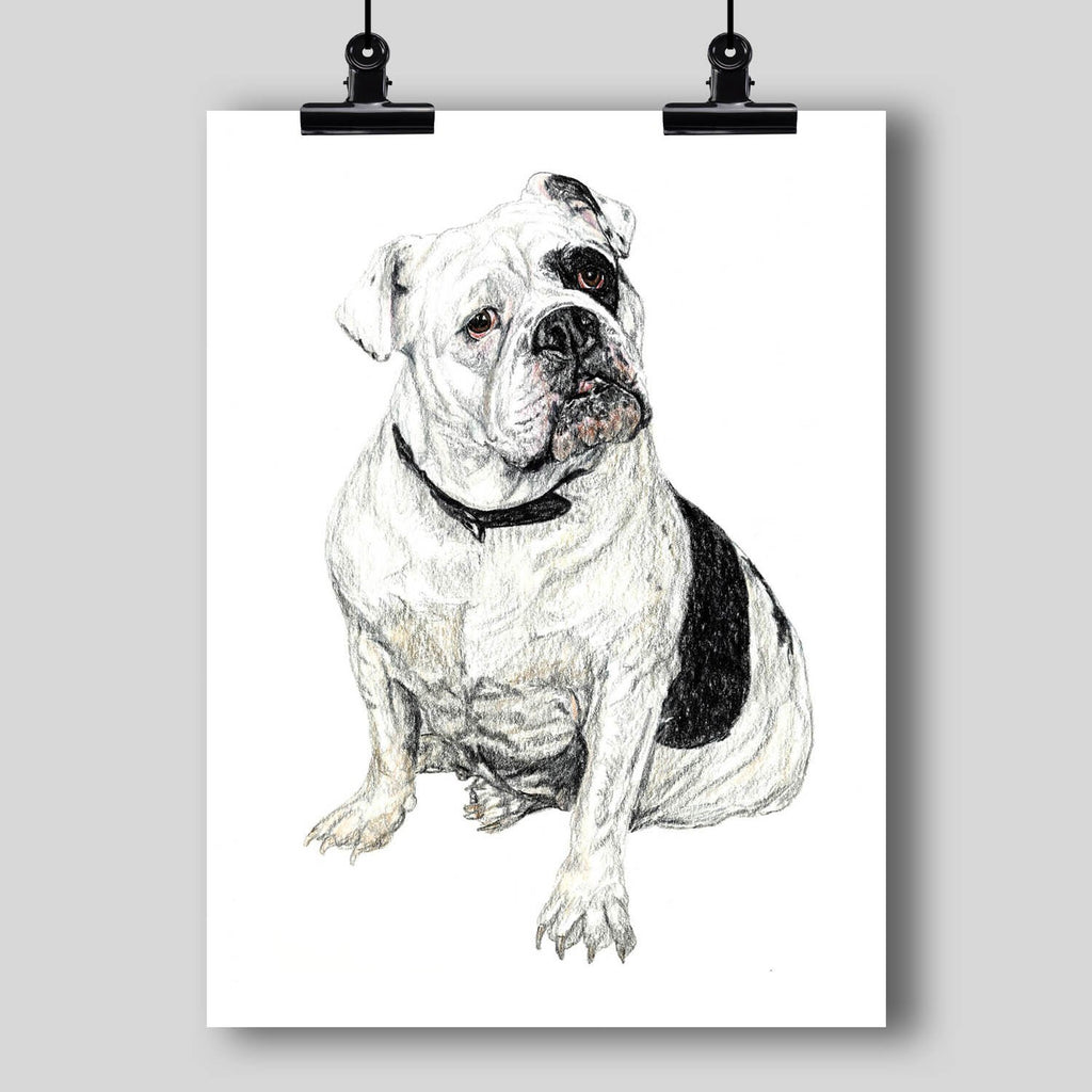 English Bulldog Fine Art Print - Dan Pearce Creative Shop